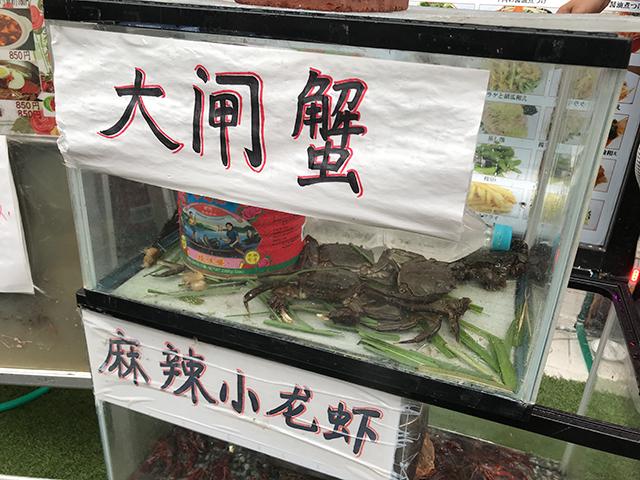 大闸蟹(モクズガニ)&小龙虾(小龍蝦/ザリガニ)